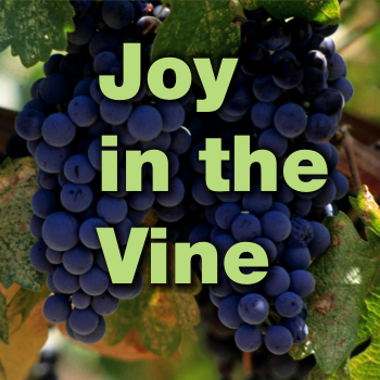 Joy in the Vine – Word of Grace Church, Pune
