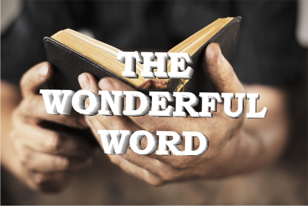 The Wonderful Word| Colin D – Word of Grace Church, Pune