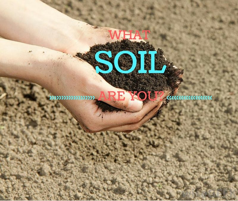 What Soil are you?| Austin K – Word of Grace Church, Pune