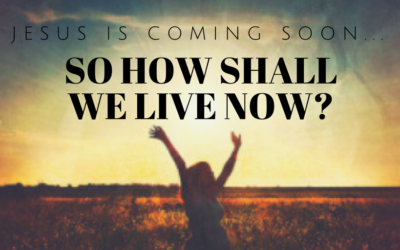 So how shall we live now? | Colin D