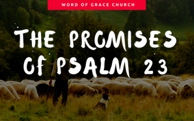 The Promises of Psalm 23 | Colin D
