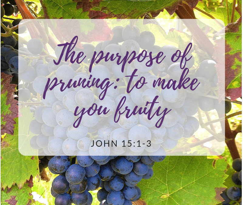 The purpose of pruning: to make you fruity John 15 Part 1| Navaz D Cruz