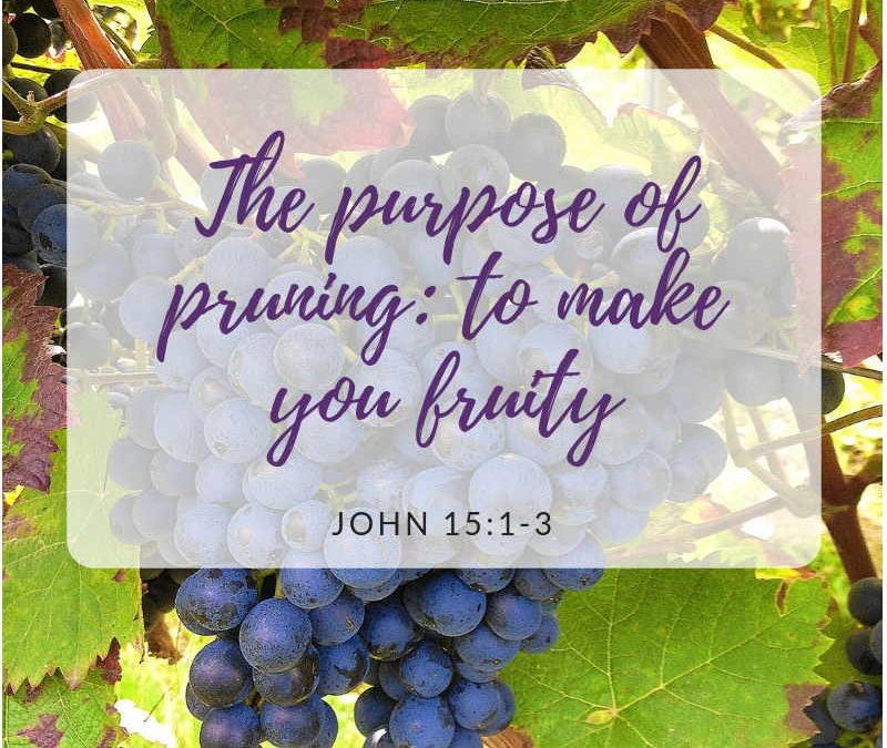 The purpose of pruning: to make you fruity John 15 Part 1| Navaz D Cruz