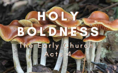 Holy Boldness – The Early Church