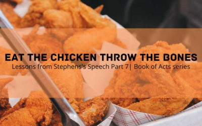 Eat The Chicken Throw The Bones | Lessons from Stephens Speech Part 7