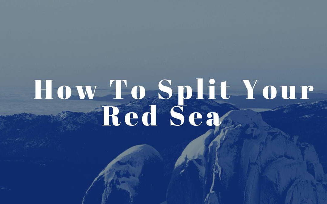 How To Split Your Red Sea