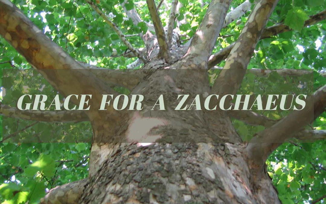 Grace For A Zacchaeus